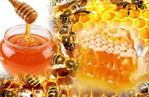 Properties of Honey